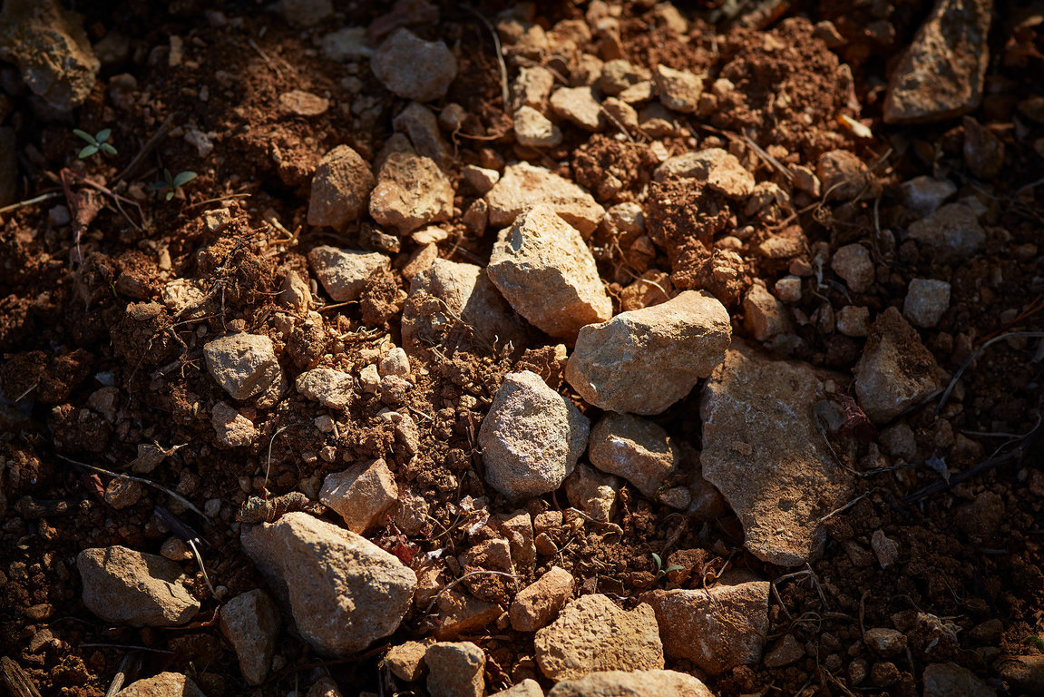 Clay-limestone soil with limestony predominance